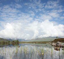Lochan na h-Achlaise on Rannoch Moor in Summer. by John Cameron