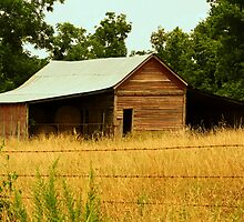 Old Barn on Cattlecreek Rd. by Susan Blevins