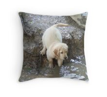 """Thunder"" At Waters Edge- 10 Throw Pillow"