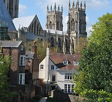 A View of York Minster by Cathy Jones