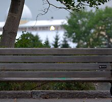 Bench III by Adam Pap