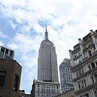 New York City Empire State Building by Vitaliy Gonikman