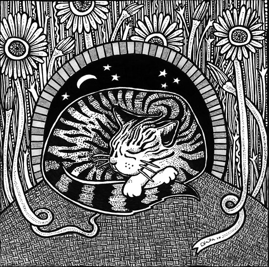 Tabbies Dream by Anita Inverarity