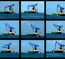Crane Sequence Venice Laguna by Keith Richardson