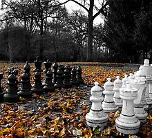 Autumn Chess by Theresa Elvin