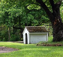 Old Empty Dog House by Wendy King