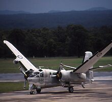 Grumman Tracker - Wings Folding - @ Nowra, Australia by muz2142