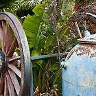 Garden Life  by Mark Swain
