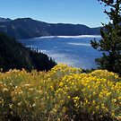Fall glory at Crater Lake by Nancy Richard