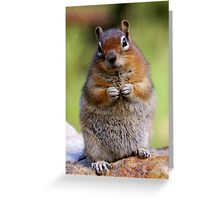 Mr. Chippy #2 Greeting Card