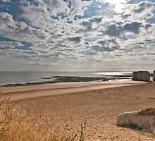 Botany Bay by Steve Lane