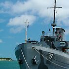 Naval Yard at Key West  by Sheryl Unwin