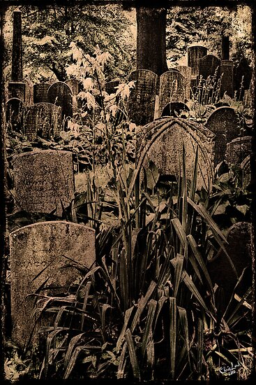 Old Time Boneyard by Chris Lord