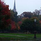 Fall Rain - Notre Dame Campus, South Bend, Indiana, USA by ArtsGirl2