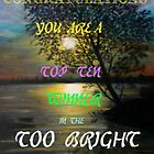 Too Bright Top Ten winner Banner by MaeBelle