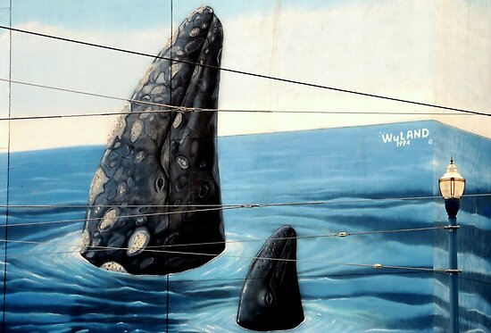~Wyland Whaling Wall Pier 39~ by a~m .