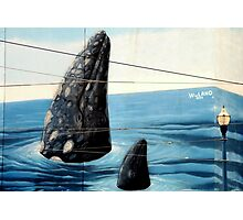 ~Wyland Whaling Wall Pier 39~ Photographic Print