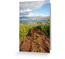 A view from the vineyard Greeting Card