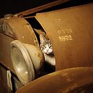 Mechanic Cat by Penny Kittel