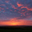 Preseli Sunset by David Meacham
