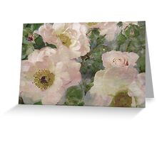 Roses, Roses, Roses. Greeting Card