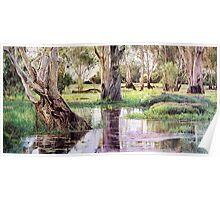 Reflections of Kakadu Poster