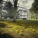 Gardens by Laurent Hunziker
