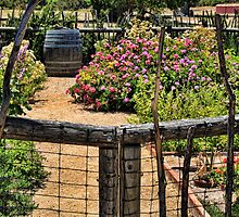 Herb Garden at La Purisima Mission by Renee D. Miranda