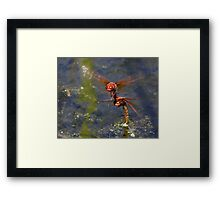 Eight-Winged Nessie Framed Print