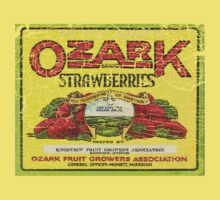ozark strawberries by redboy