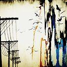 pylons by Daisy Watson