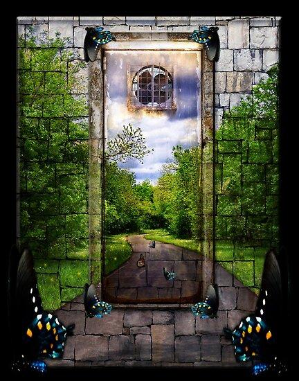 Beyond The Door by Elizabeth Burton