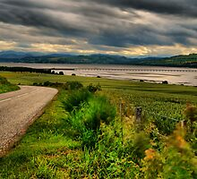 Cromarty Bridge by John Ellis