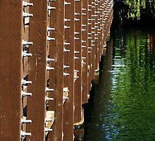 Bridge by Barry Hobbs