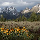 Grand Teton &amp; Mule&#x27;s Ears by A.M. Ruttle