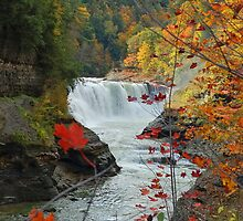 Lower Falls - Letchworth State Park by Jill Vadala
