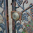 Grape Vine Gate by Jill Vadala