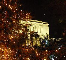 Christmas Temple II by Leyla Hur