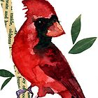 Northern Cardinal by Carol Kroll