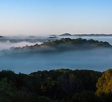 Morning Mist panorama, Terranora NSW, 13 July 2010 by Odille Esmonde-Morgan