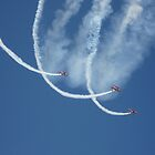 Showing Off - Rochester Airshow by boliver