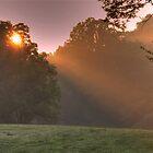 Morning Picnic by DevereauxPrints