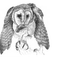 Barn owl and prey by Laura Grogan