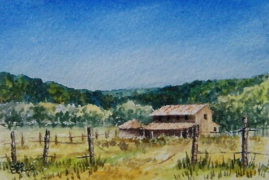 Hunter Valley Summer by Fiona  Lee