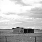 Black & White Shed by Alecia Scott