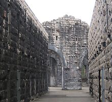 Interior of the Ruins of Trial Bay Gaol II. by Maureen Dodd