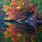 Fall Reflection by martinilogic