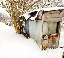 Snow covered shed, Lewes by Celia Strainge
