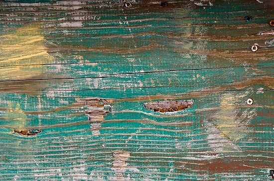 Small craft off Plum Island Beach by Susana Weber