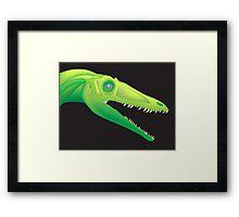 Coelophysis bauri Framed Print